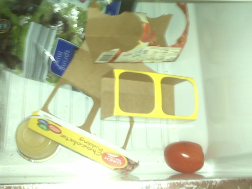 empty cartons left in crisper drawer